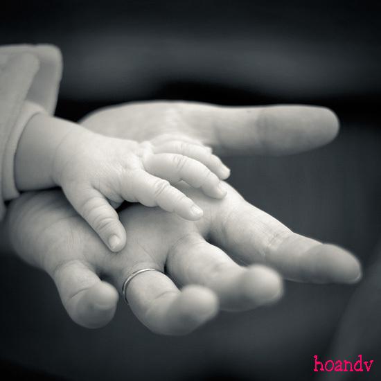 Stt mẹ yêu, Status về mẹ hay ý nghĩa nhất con dành tặng mẹ