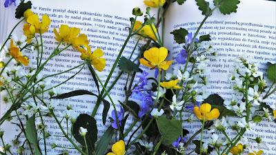 Día del Libro: comienza la estación literaria