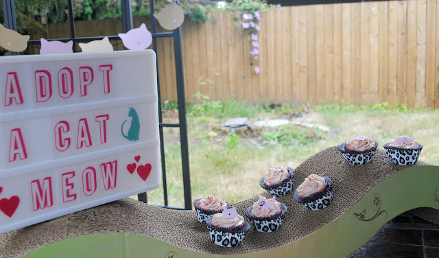 Adopt a cat mini party with cupcakes by Fizzy Party
