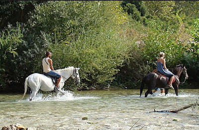 Τραυματισμός μικρού κοριτσιού από κουρασμένο άλογο στον Αχέροντα