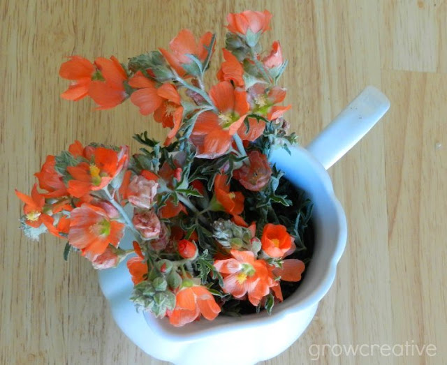 Orange Wildflowers: growcreativeblog