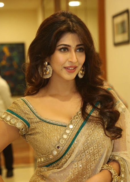 Sonarika Bhadoria Super Sexy in Backless Saree at Eedorakam Aadorakam Audio Launch