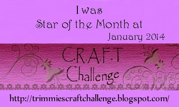 02 feb'14 Star of the month Jan'14