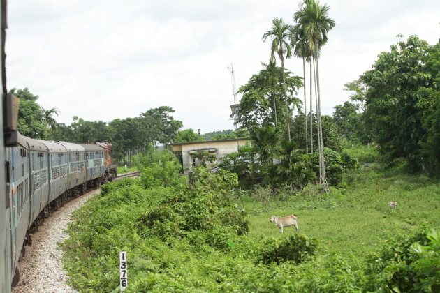 Vivek Express Train and lush green Indian countryside during the monsoons