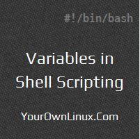 Bash Scripting Variables - Environment and Special Shell Variables