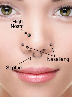 Nose Piercing Jewerly Nose Piercing Has Been A Split Of Various