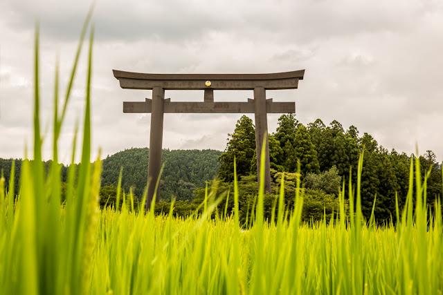 Oyunohara Torii :: Canon EOS5D MkIII | ISO200 | Canon 24-105@40mm | f/9.0 | 1/100s
