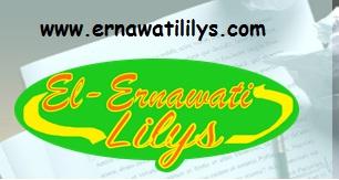 www.lisojungchan.blogspot.com ganti menjadi ernawatililys.blogspot.com