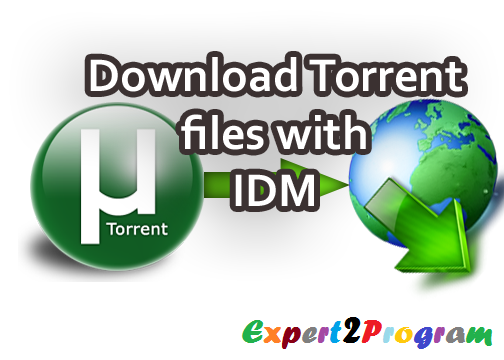 torrent internet download manager