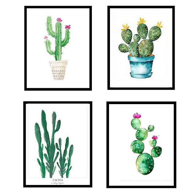 plakat kaktus gdzie kupić? grafiki sukulenty,