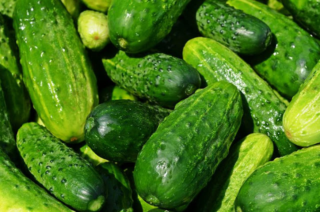 Summer Fruit in Season | Dehydration Fruit and Vegetables