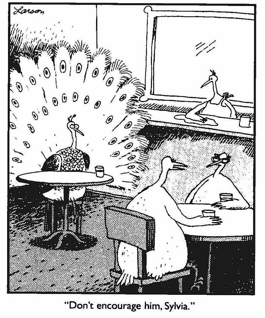 a Gary Larson cartoon