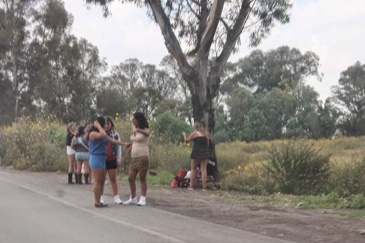 prostitutas la laguna poligonos de prostitutas