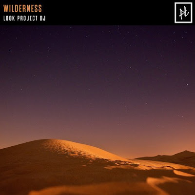 Look Project DJ Wilderness (Original Mix)