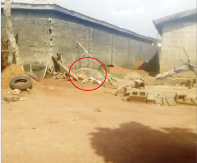 Confused mother throws epileptic son's corpse into cesspit