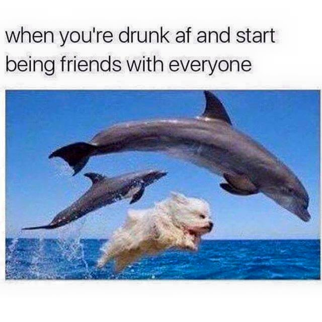 When you're drunk and start being friends with everyone