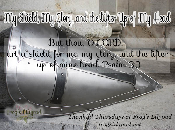 We can rejoice in knowing the same Shield who protected David is the same Shield who protects us. He is my Shield.Thankful Thursdays. frogslilypad.net