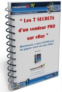 télécharger l'eBook Les 7 SECRETS d'un vendeur PRO sur Ebay