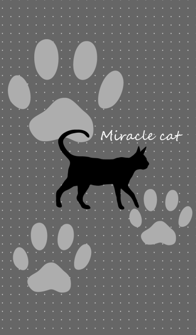 Miracle cat