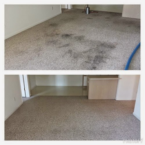 carpet cleaning fayetteville nc, brighter image carpet cleaning