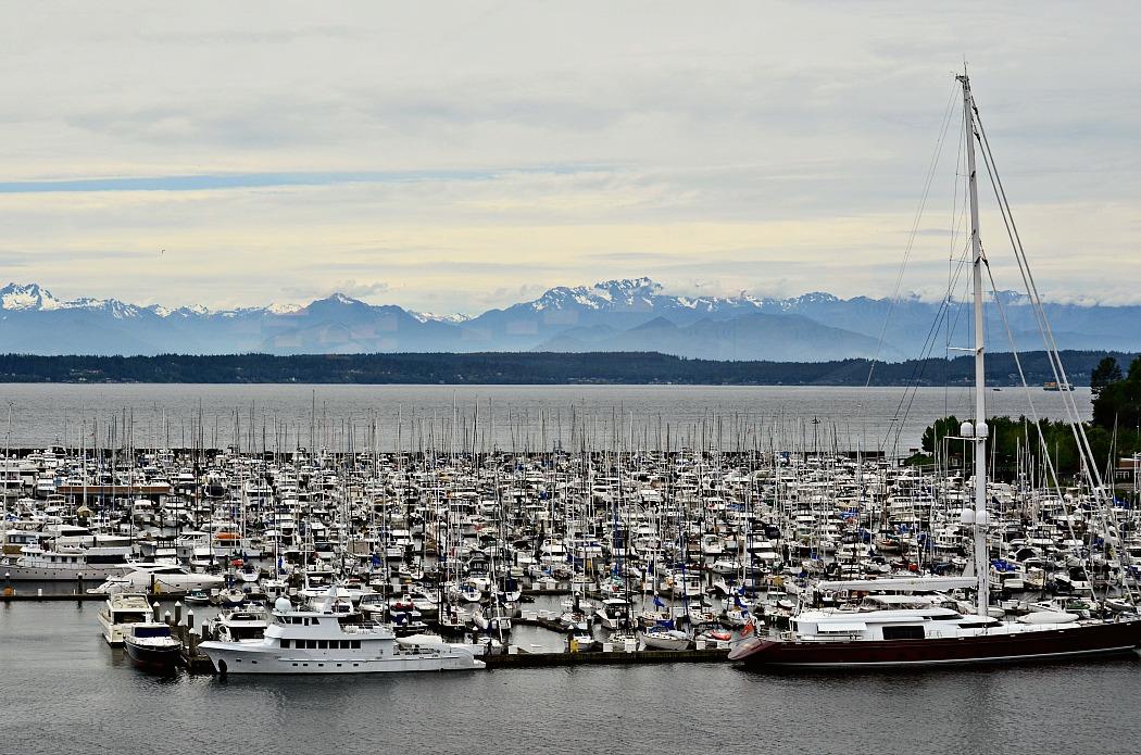Holland America Line Seattle Marina Port View