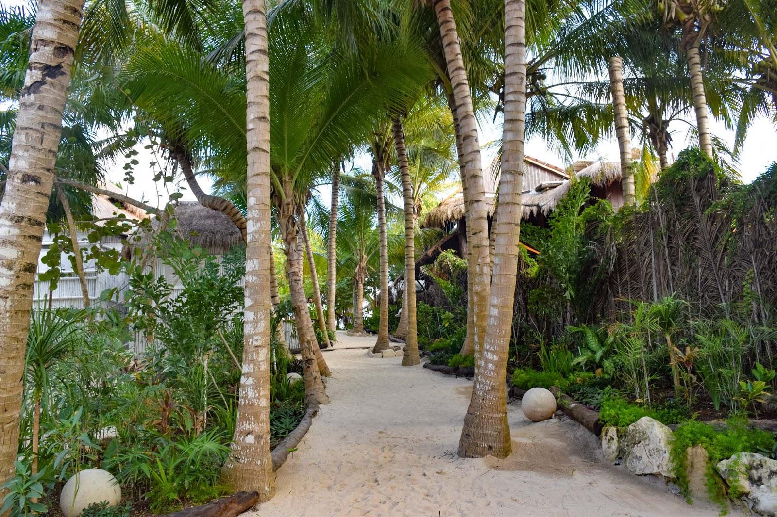 coco tulum eco resort