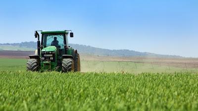 Crops, Gardening, Farm