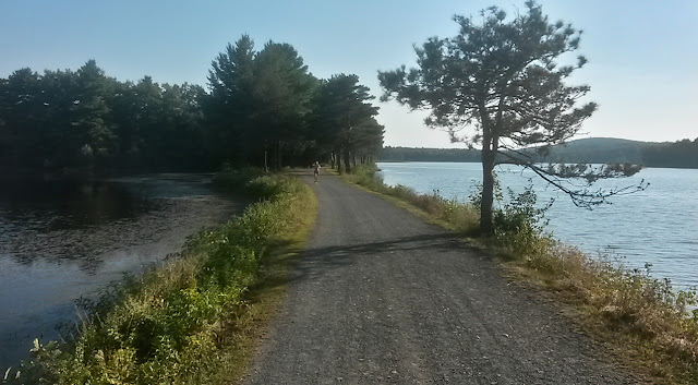 one of the causeway trails at Ashley Pond