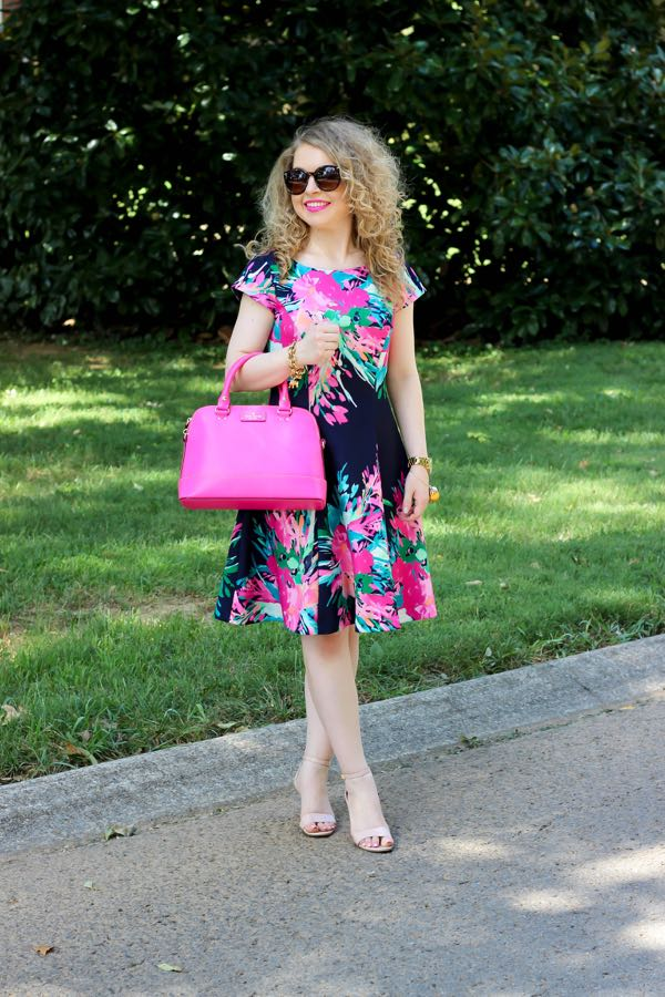 Eliza J. Floral Print Scuba Fit & Flare Dress