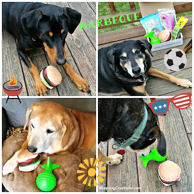 3 rescue dogs toys bbq