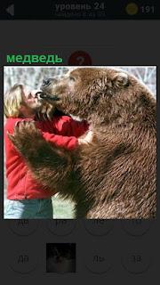Большой медведь облизывает своего хозяина, стоя на задних лапах