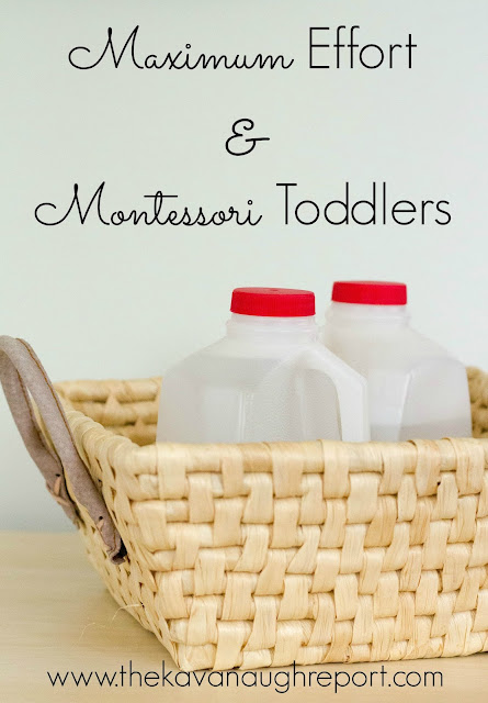Toddlers can often be seen trying to haul heavy objects. In Montessori we recognize this as the need to reach maximum effort.