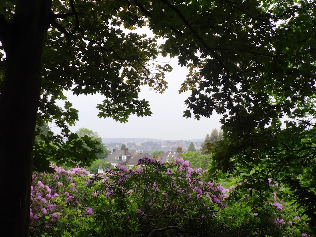 View_Golders Hill Park