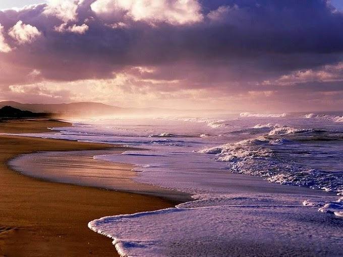 Osho - Bạn là đại dương tâm thức hay là nước trong dấu chân bò?