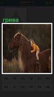 ребенок на лошади и держится за большую и красивую гриву