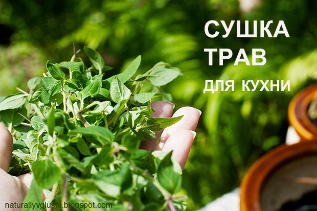 сушка трав для кухни | Блог Naturally в глуши