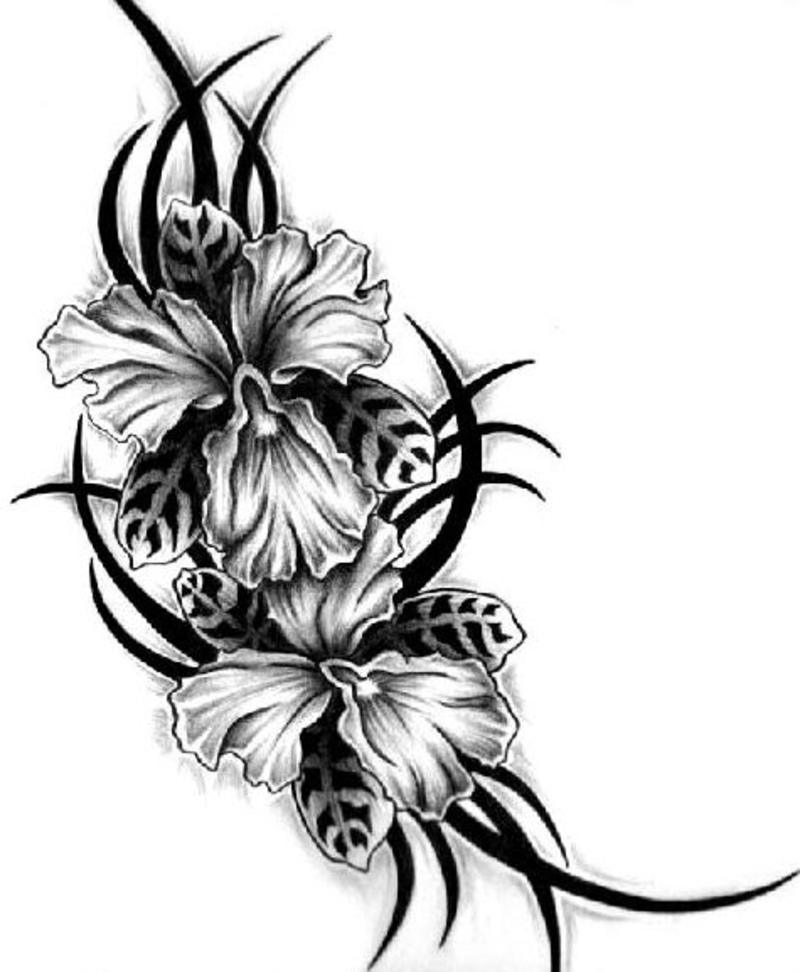 Lipby Blogs: Exotic Flowers Tribal Tattoo Design
