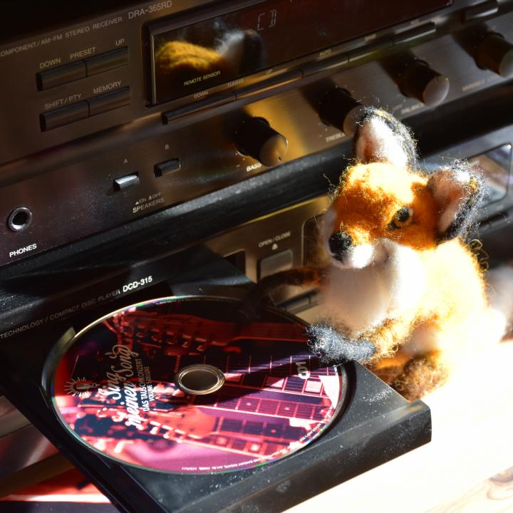 Fuchs legt CD ein