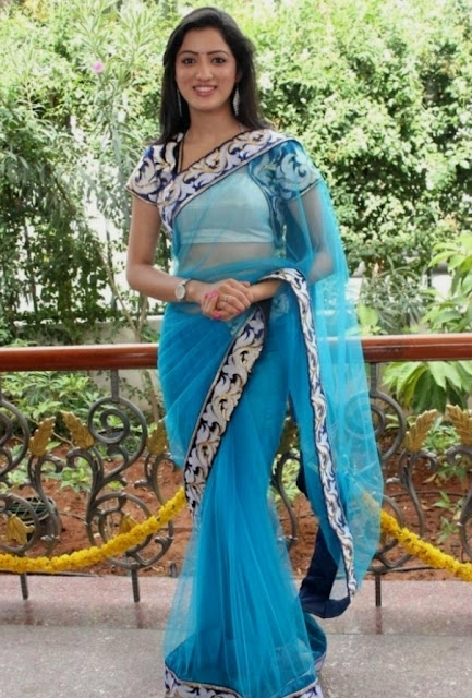 Richa Panai Hip Navel In Transparent Blue Saree Photos