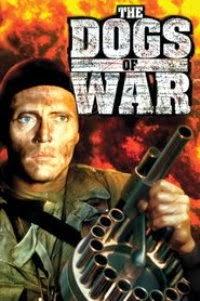 War Dogs Watch Online