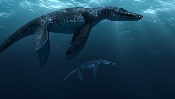 Liopleurodon. Sumber : listverse.wpengine.netdna-cdn.com