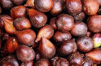 manfaat buah salak untuk kesehatan tubuh