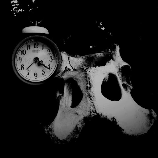 El tiempo en los huesos. Foto Mar Goizueta