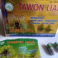 kapsul tawon liar herbal jamu asam urat di kalimantan