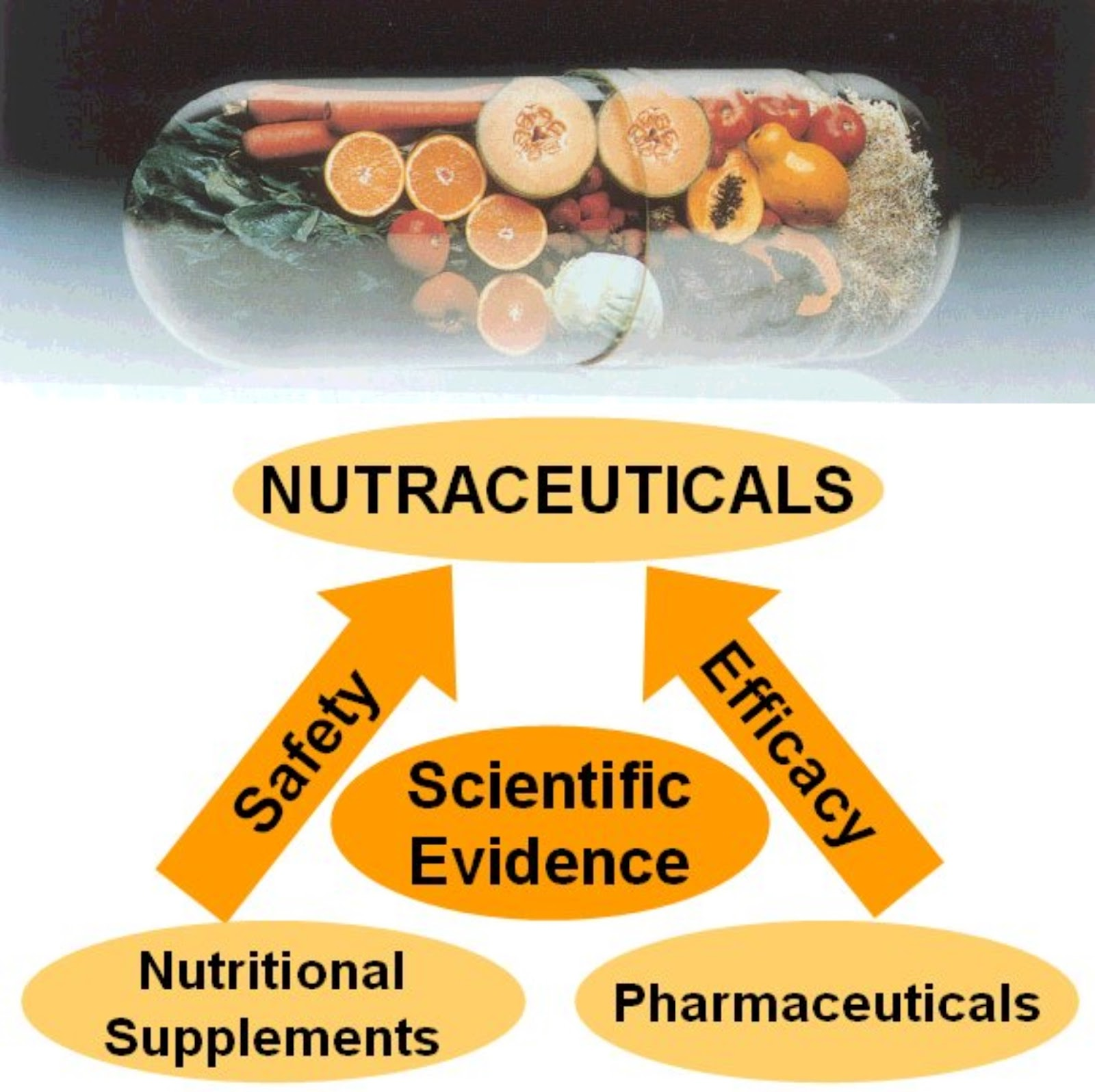 APPLICATIONS OF NUTRACEUTICALS EBOOK