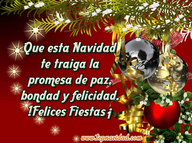 Imagenes Chistosas De Navidad Y Año Nuevo