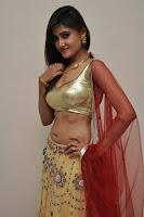 Telugu heroines Sony Charishta