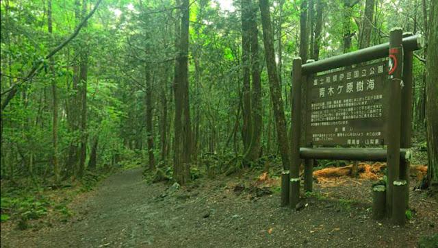 letrero en aokigahara
