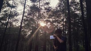 #PINUSAN, Wisata Hutan Pinus LimpaKuwus, Purwoker, Baturaden, Banyumas.