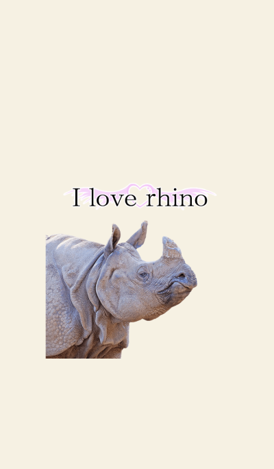 Dress up of rhinoceros